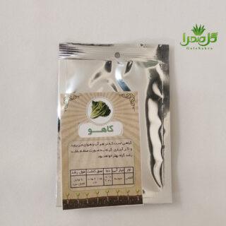 بذر کاهو موجود در تولیدی گل صحرا