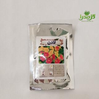 بذر گل لادن موحود در تولیدی گل صحرا