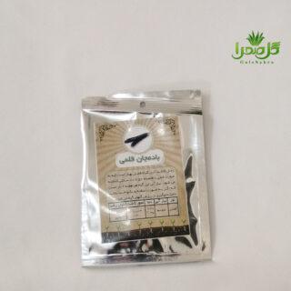 بذر بادمجان قلمی موجود در تولیدی گل صحرا